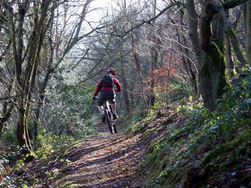 mountain-biking-New-Zealand
