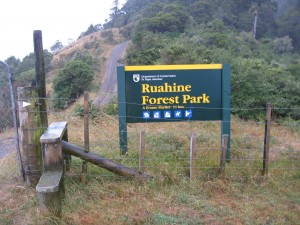 Ruahine Forest Park